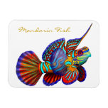Colorful Mandarin Goby Reef Fish Premium Flexi Mag Rectangle Magnets