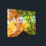 "Colorful Maple Treetops Canvas Print<br><div class=""desc"">Colorful Maple trees during a bright and beautiful day of Autumn 2017. The Province of Quebec,  Canada.</div>"