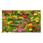 Colorful Marigold Flower Bed Double-Sided Standard Business Cards (Pack Of 100)
