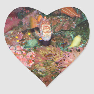 Colorful Marine Life Heart Stickers
