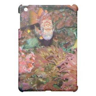 Colorful Marine Life iPad Mini Cases