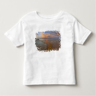 Colorful mineral deposits emit from Black Pool 2 Toddler T-shirt
