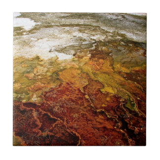 COLORFUL MINERAL DEPOSITS IN A THERMAL POOL CERAMIC TILE