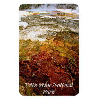 COLORFUL MINERAL DEPOSITS IN A THERMAL POOL MAGNET