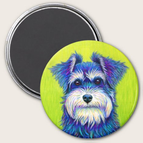 Colorful Miniature Schnauzer Dog magnet