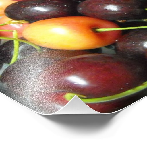 Colorful Mixed Cherries Food Photography Prints Photographic Print