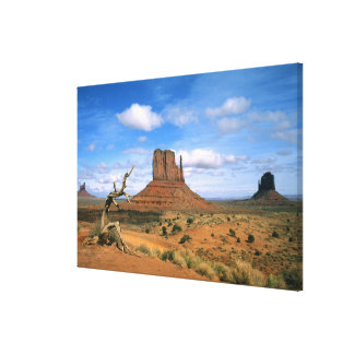 Colorful Monument Valley Mittens in Utah USA Canvas Print