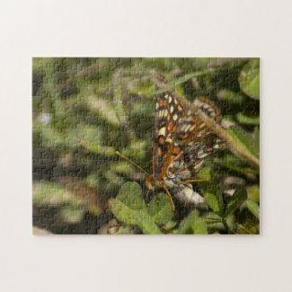 Colorful Moth Puzzle puzzle