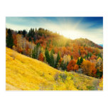 Colorful mountain autumn landscape postcard