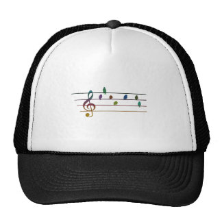 Colorful musical birds on power line trucker hats