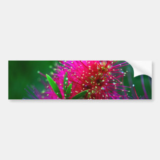Colorful Nature Floral Hot Pink Neon Green Flowers Bumper Sticker
