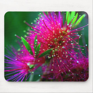 Colorful Nature Floral Hot Pink Neon Green Flowers Mouse Pad