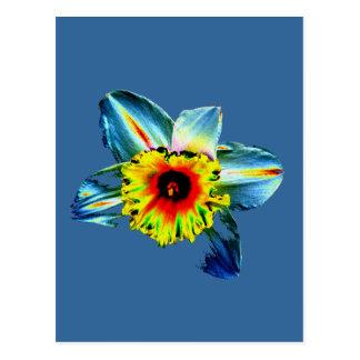 Colorful Neon Daffodil Postcard