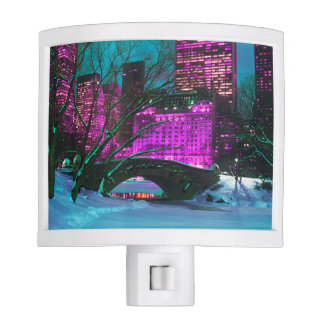 Colorful New-York City Central Park View Night Light