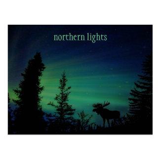 Colorful Northern Lights Sky Postcard