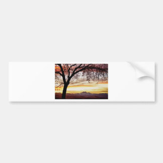 Colorful November Sunset Sky and Longs Peak Bumper Sticker