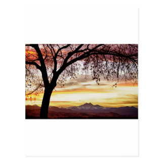 Colorful November Sunset Sky and Longs Peak Postcard