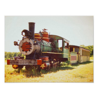 Colorful Old Train Caboose Poster