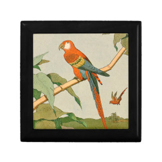 Colorful Orange and Brown Parrot on Bamboo Gift Box