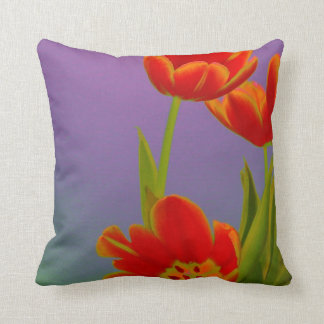 Colorful orange tulips on purple pillows