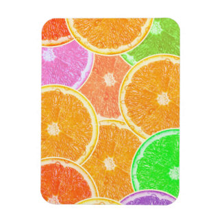 Colorful Oranges Magnet
