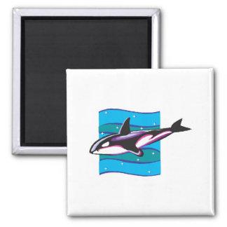 colorful orca design 2 inch square magnet
