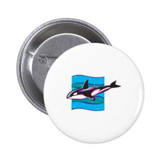 colorful orca design button