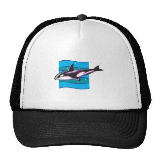 colorful orca design mesh hats
