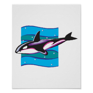 colorful orca design poster
