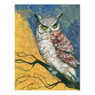 colorful owl postcard