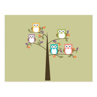 Colorful Owls in Pretty Tree Calender Post Card