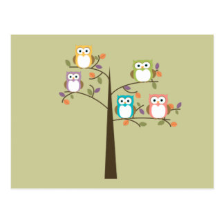Colorful Owls in Pretty Tree To Do List Postcard