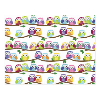 Colorful owls on a branch postcard