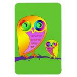 Colorful Owls Vinyl Magnet