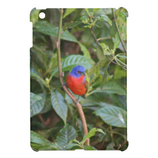 Colorful Painted Bunting Bird Cover For The iPad Mini