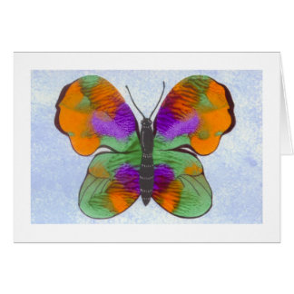 Colorful Painted Butterfly Card