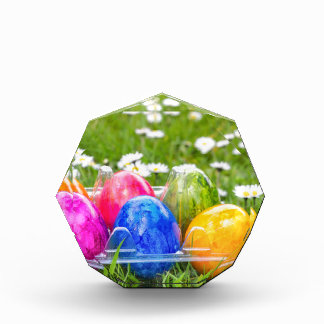 Colorful painted easter eggs in grass with daisies award