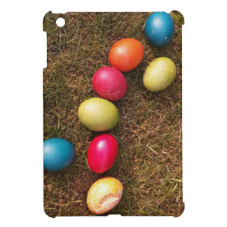 Colorful Painted Eggs in Garden, Easter Egg iPad Mini Case