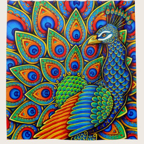 Colorful Paisley Peacock Rainbow Shower Curtain