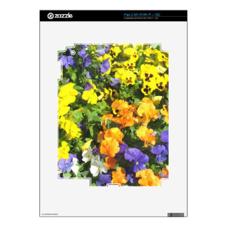 colorful pansy flowers yellow orange blue skins for the iPad 2
