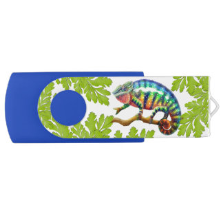 Colorful Panther Chameleon 64GB USB Flash Drive