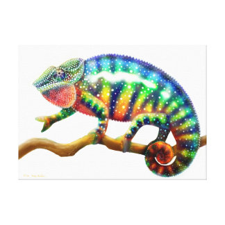 Colorful Panther Chameleon Lizard Wrapped Canvas