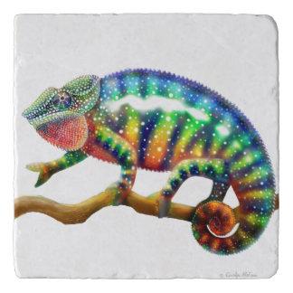 Colorful Panther Chameleon Stone Trivet