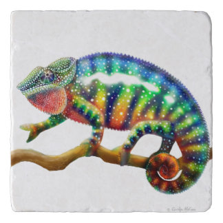 Colorful Panther Chameleon Stone Trivet Trivets