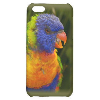 Colorful parakeet cover for iPhone 5C