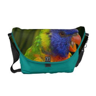 Colorful parakeet messenger bag