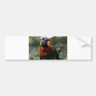 Colorful Parakeet Mug Shot Bumper Sticker
