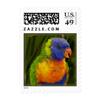 Colorful parakeet postage stamps
