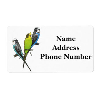 Colorful Parakeets Image Label