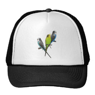Colorful Parakeets Image Trucker Hat